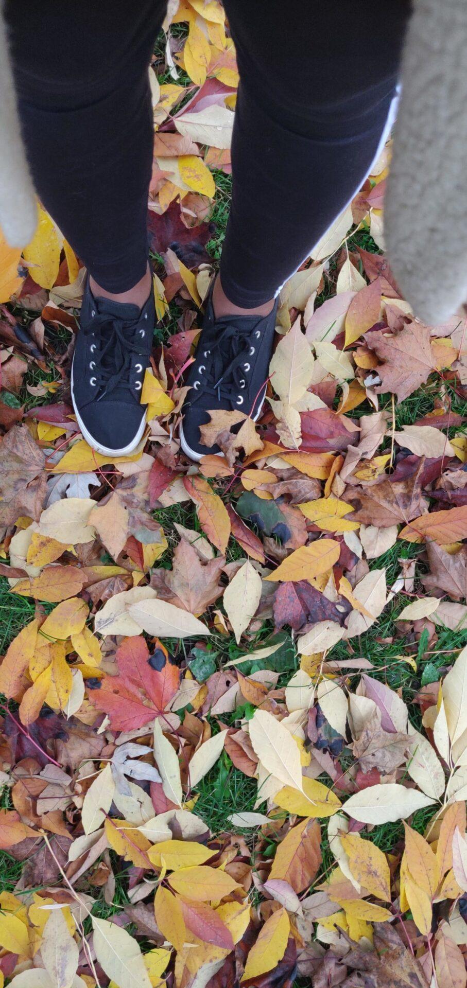 destiny's legs in fall leaves